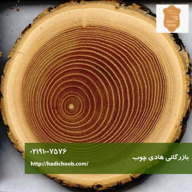 انواع چوب و کاربرد آن